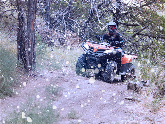 The Best ATV Trails to Ride During the Winter
